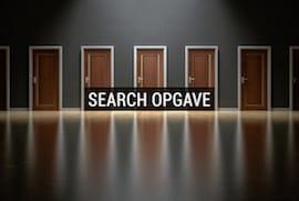 Search opgave   -    kr. 37.500,- ex.moms